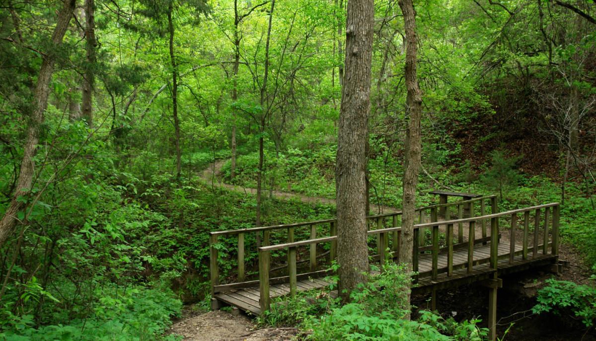 Cedar Ridge Preserve - CultureMap Dallas