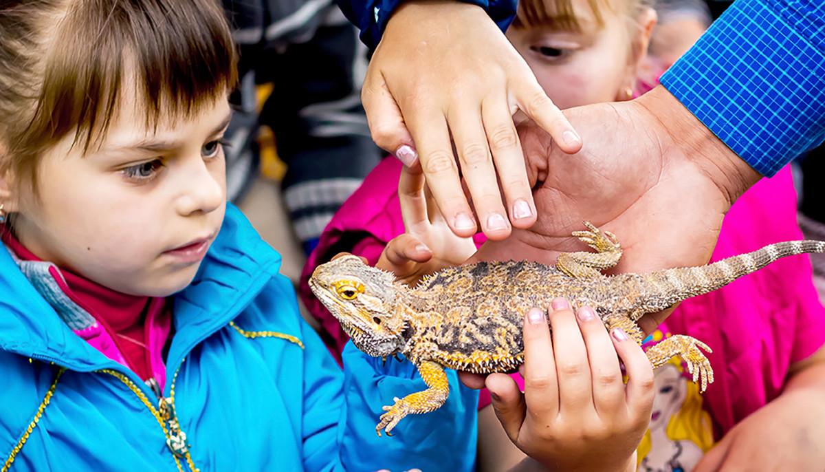 Prairie Paws Adoption Center presents Pet-U-Cation Fair - Event