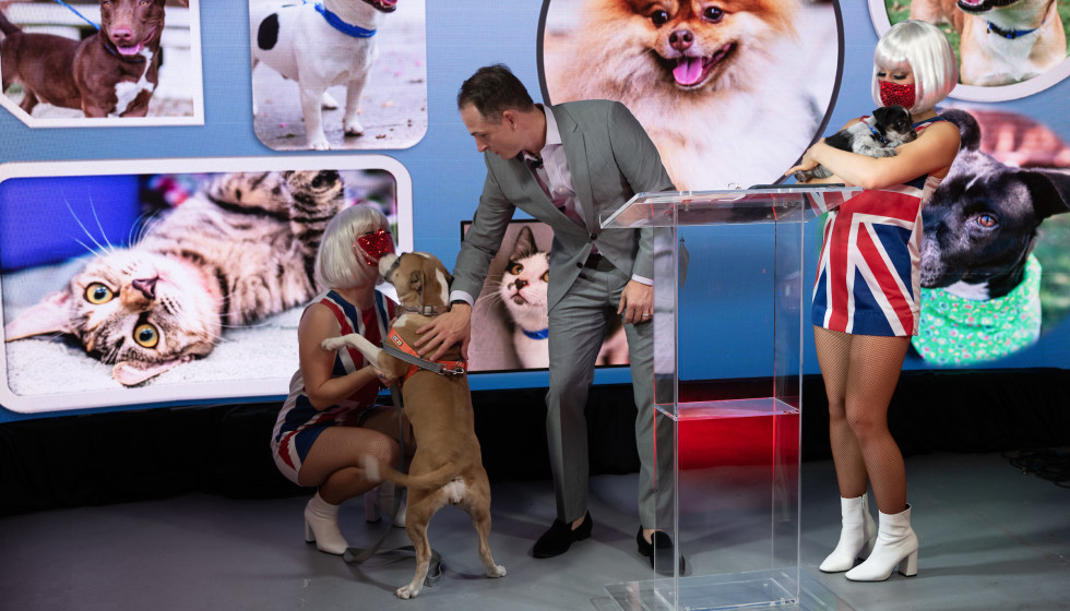 CAP gala 2020 All You Need is Love Johnny Bravo dogs stage