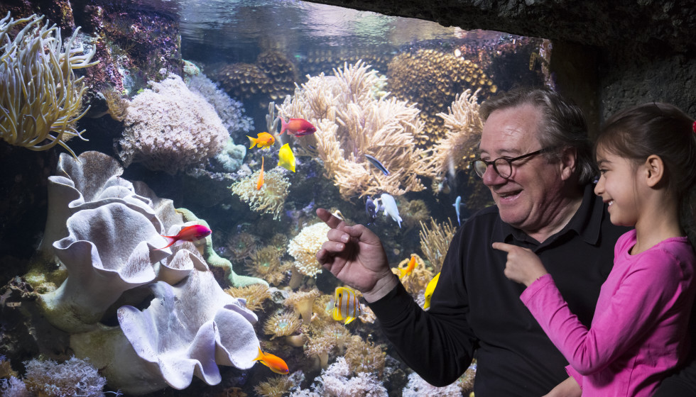 Texas' newest underwater attraction sets splashy spring opening date