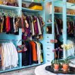 Houzz Houston house home Federalist-Style closet