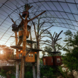 These amazing texas treehouses take glamping to new for Piani casa texas