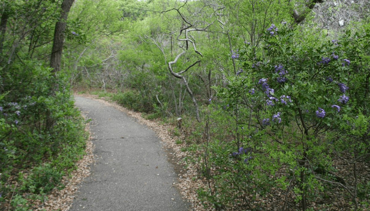 The 11 best hiking trails in San Antonio - CultureMap San