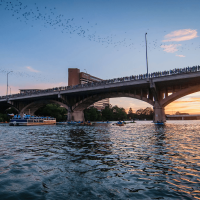 Rowing Dock downtown Austin Congress Avenue Bridge bats kayaking