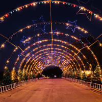 Austin Trail of Lights Zilker Park tunnel holiday Christmas