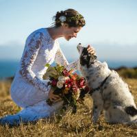 Lovely Bride Dallas wedding dress