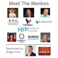 "Houston Young Professionals hosts ""Meet the Mentors"""