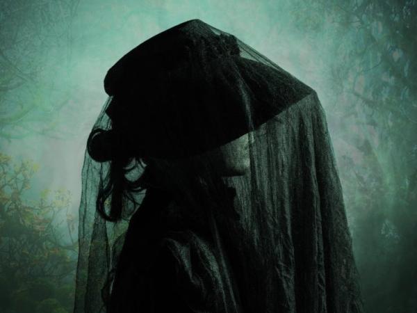 Woman in Black Penfold