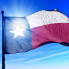 Sofia Sokolove: Texas is near the top of America's most racially integrated states once again