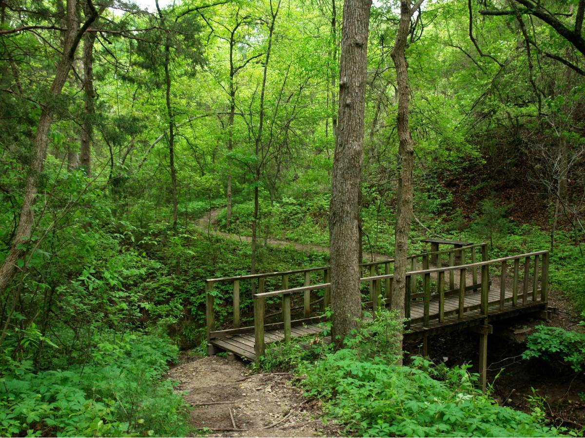 Cedar Ridge Preserve Culturemap Dallas