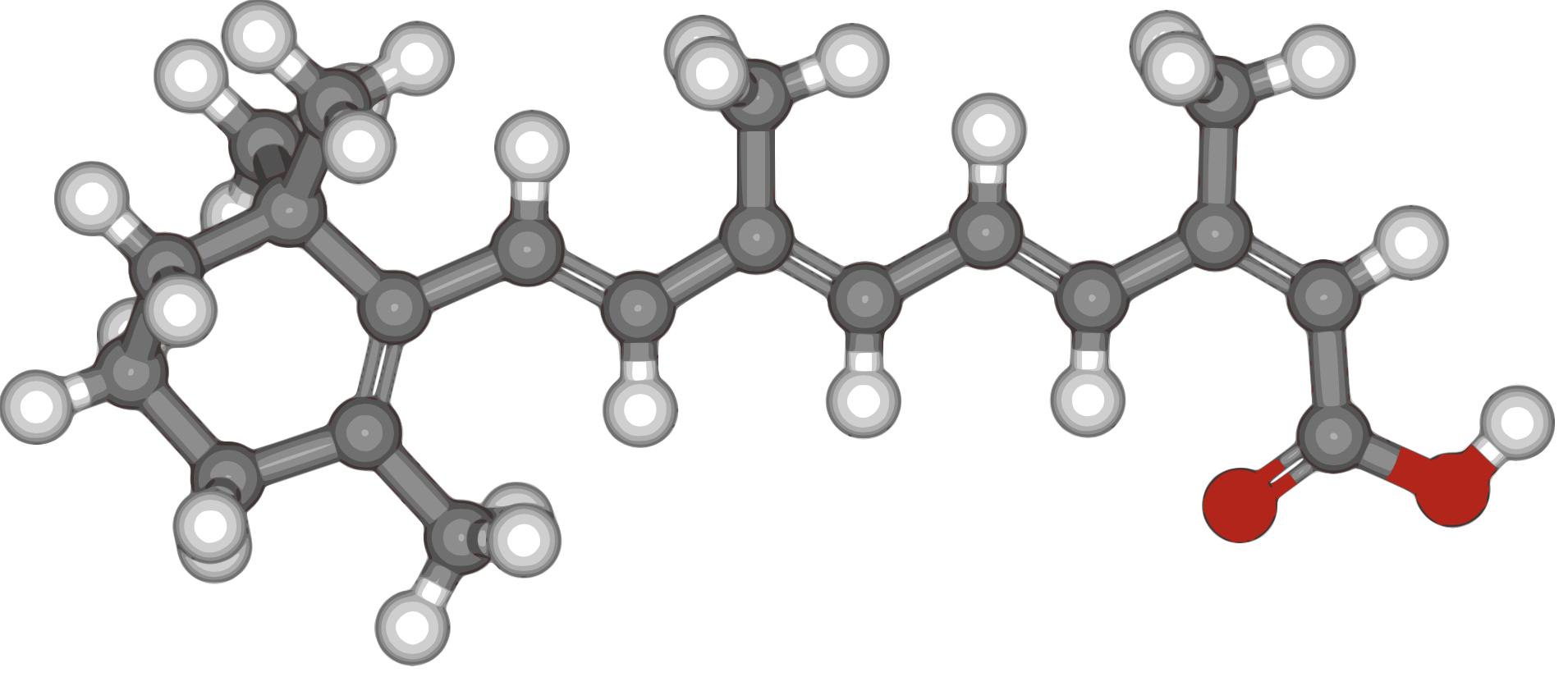 Isotretinoin (Accutane) Analysis