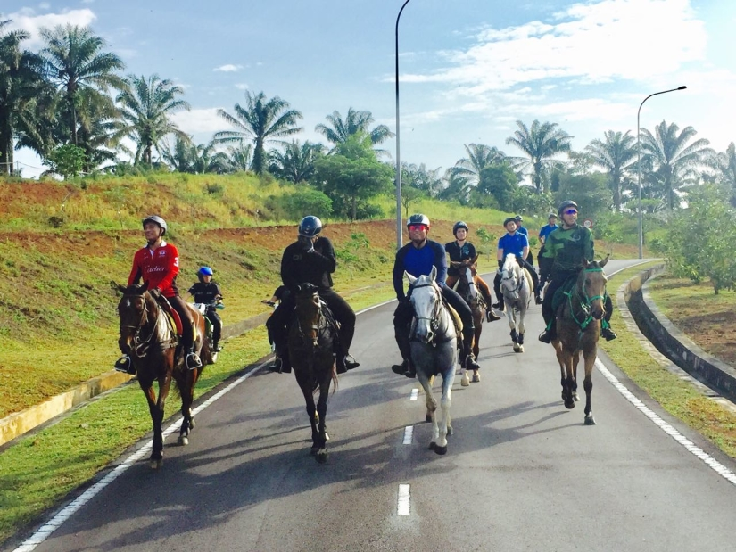 UTM Equine Park offers the joy of riding lessons, horse riding, horse camp, outdoor photoshoot, team building.