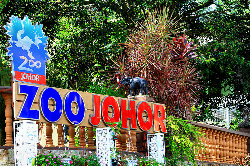 Zoo Johor is located at Jalan Gertak Merah. It is at the heart of Johor Bahru. It is situated near to the Royal Museum and the Johor Bahru Palace Grouds.