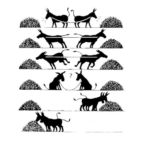 Priča o dva magarca