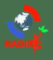 Radix International Consulting, LLC | DoD Contractor Maryland