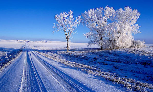 Winter of Discontent?
