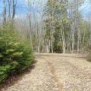 Little Presque Isle Lake Lot 7