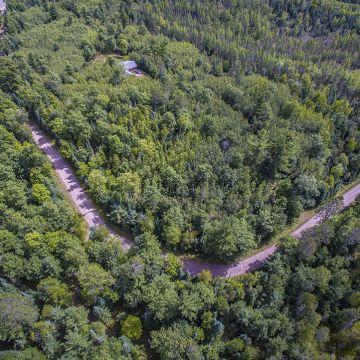 Scotchman Lake Rd. Acreage 1