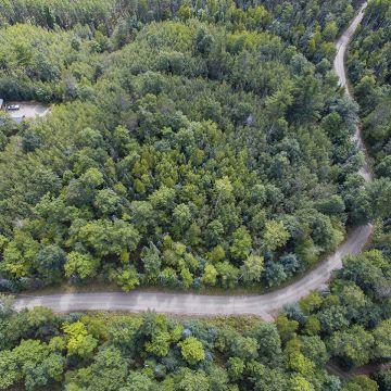 Scotchman Lake Rd. Acreage 3