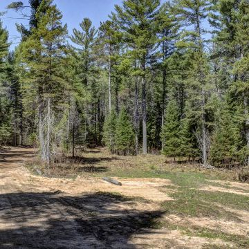 Ross Lake Road Acreage 4
