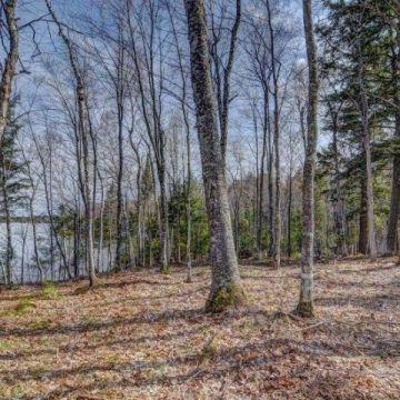 Annabelle Lake Lot 5