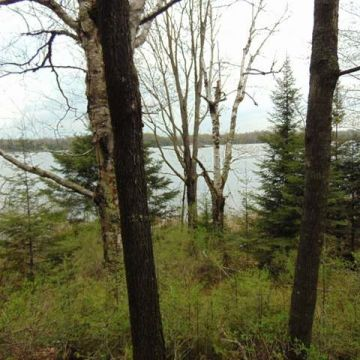 Twin Island Lake Lot 1