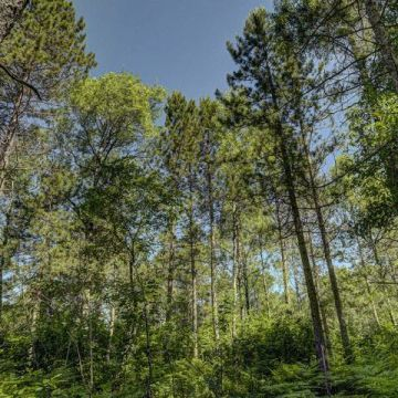 Carefree Acres Lot #11 7