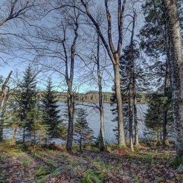 Timber Wolf Road Lot 30 on Beaver Lake, Presque Isle 9
