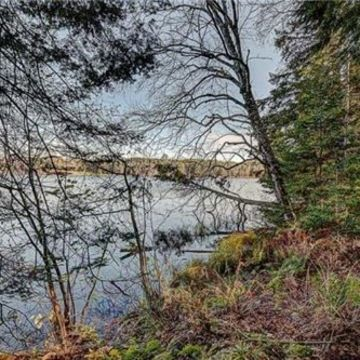 Timber Wolf Road Lot 31 on Beaver Lake, Presque Isle 2