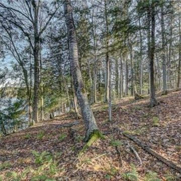 Timber Wolf Road Lot 31 on Beaver Lake, Presque Isle 8