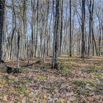 Timber Wolf Road Lot 31 on Beaver Lake, Presque Isle 9