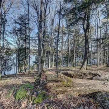 Timber Wolf Road Lot 31 on Beaver Lake, Presque Isle 11