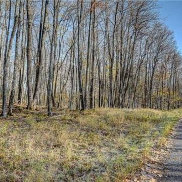 Timber Wolf Road Lot 31 on Beaver Lake, Presque Isle 13