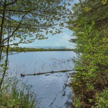 7+ Acres off Hanser Lane in Lac du Flambeau 8