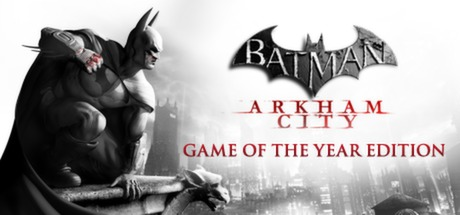 Batman: Arkham City Video Game