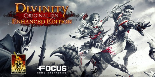 Divinity: Original Sin Enhanced Edition Video Game