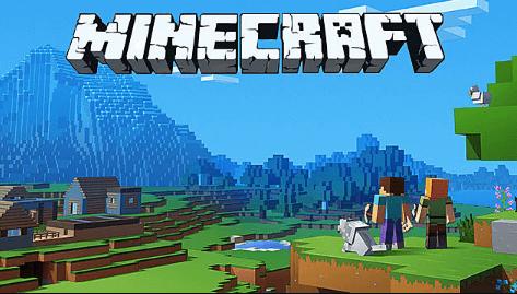 Minecraft Sandbox Video Game
