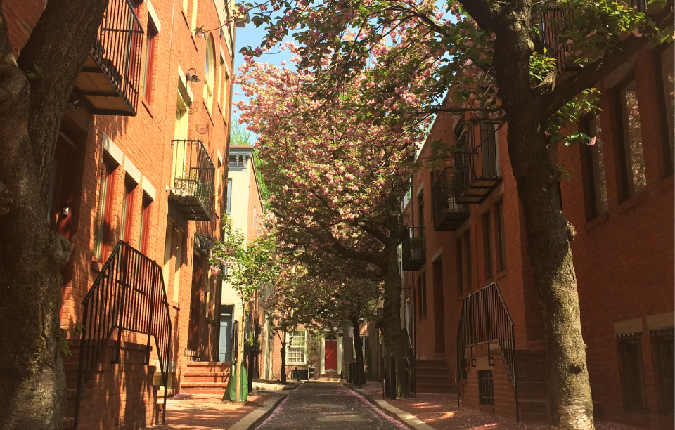 pennsylvania landlord tenant laws: sun-shining on tree and 3 story apartment buildings
