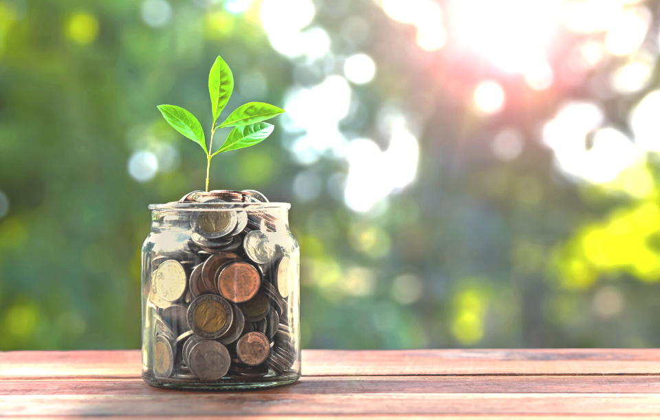 glass jar with coins and a plant for no money down investment blog