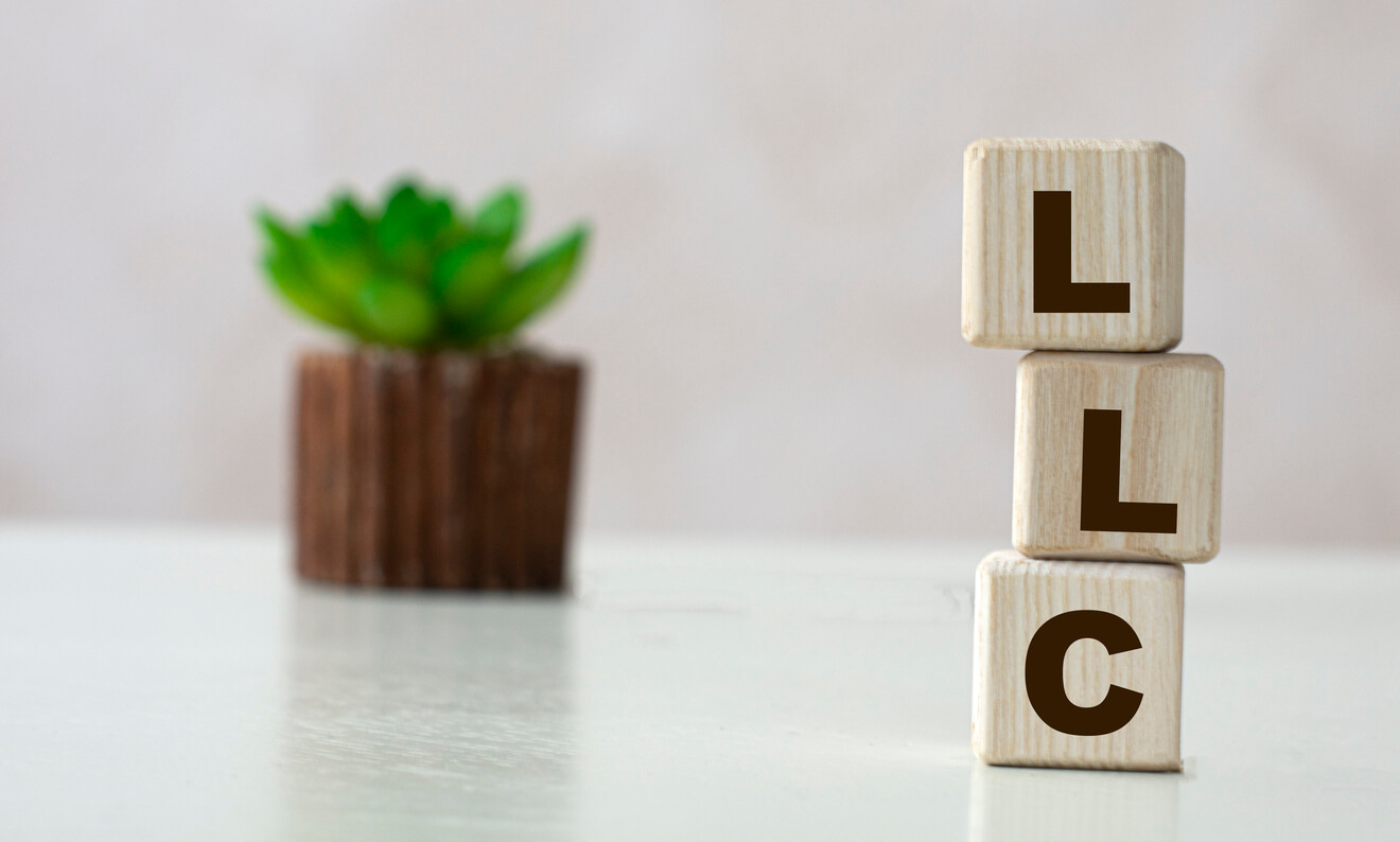 LLC for rental property hero image: LLC acronym on wooden cubes on a light background with a cactus