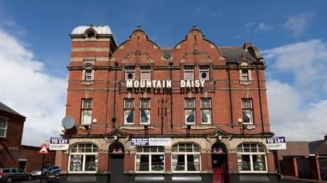 Mountain Daisy Hylton Road Sunderland Tyne and Wear SR4 7XT