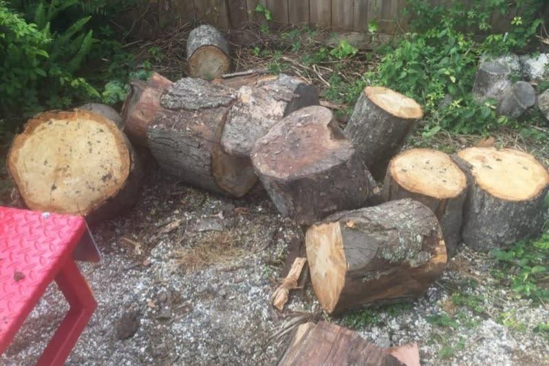 Log Splitter for Hire