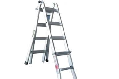 Rhino Adjustable Extension Ladder