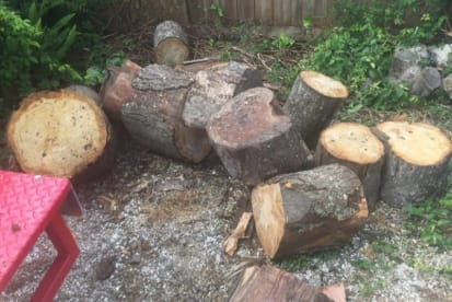 Log Splitter for Hire