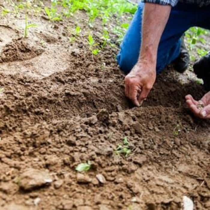 Small Garden Hacks