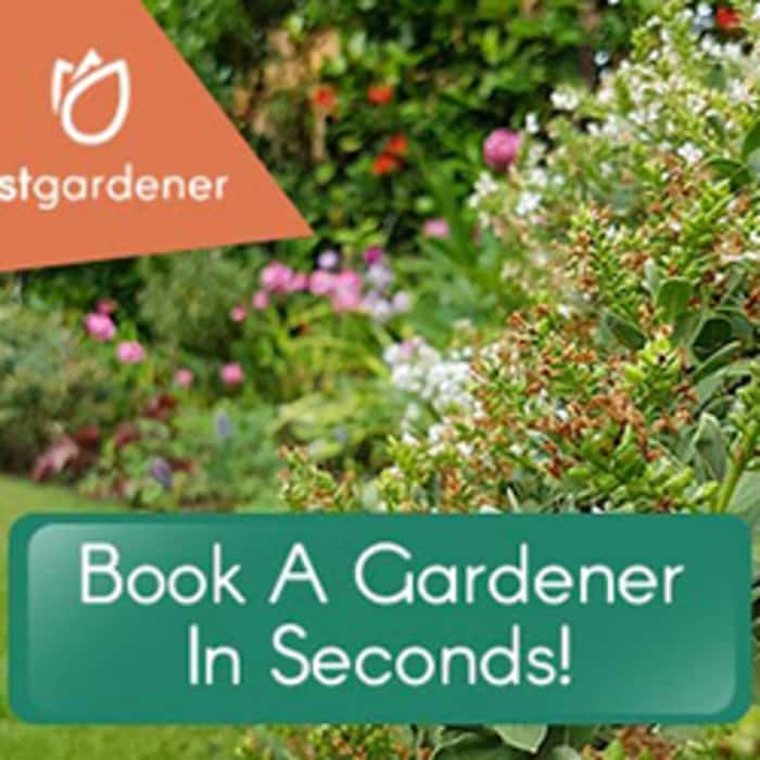 Fastgardener Now Live!