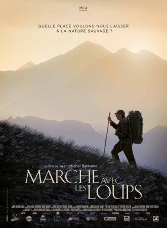 Le film « Marche avec les loups » de Jean-Michel Bertrand sort en salle le mercredi 15 janvier 2020.