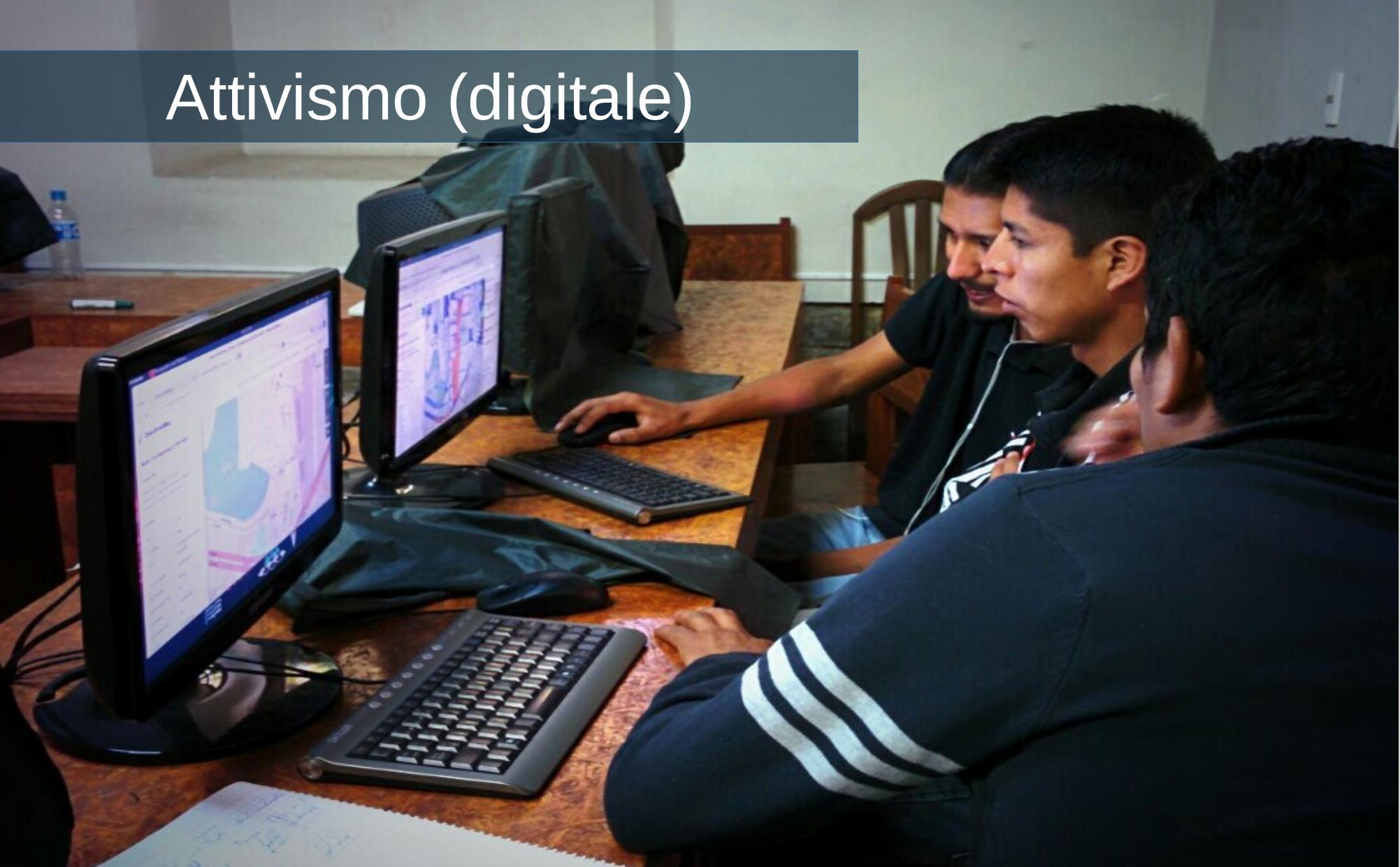 Alcuni attivisti al computer