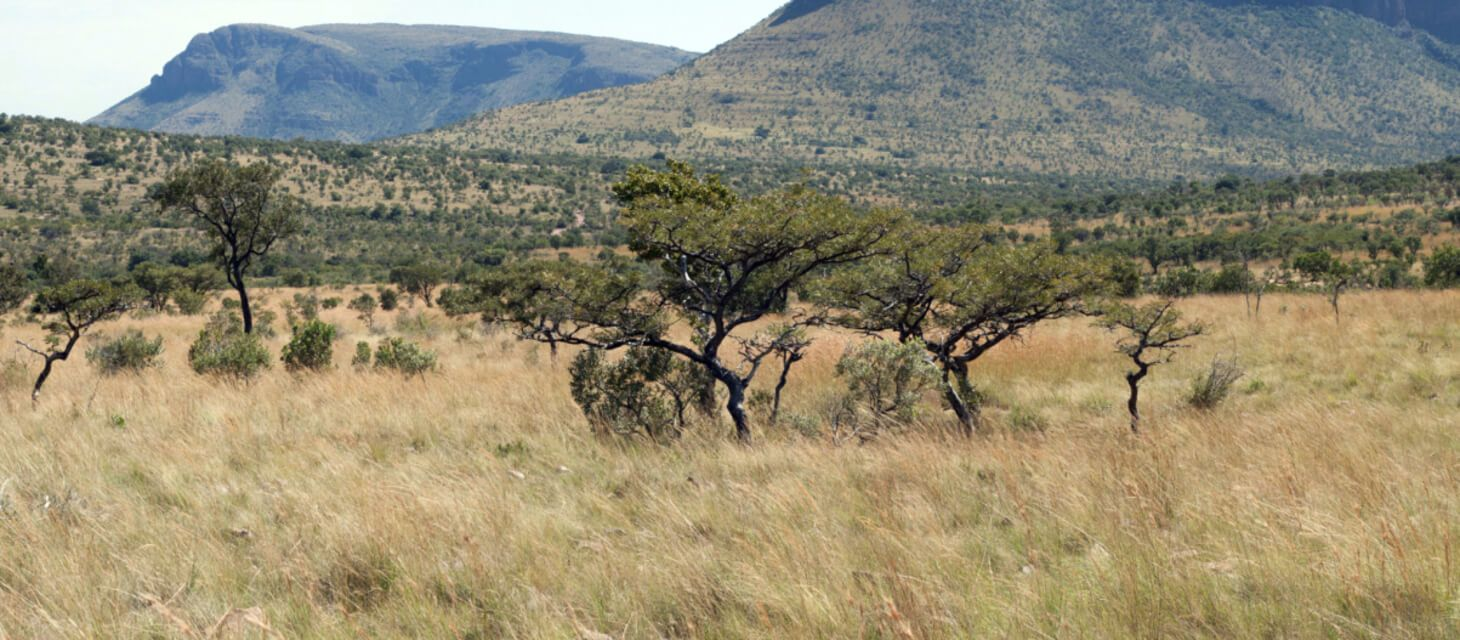 Waterberg (South Africa)