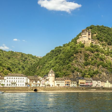 Enchanting Rhine River Cruise